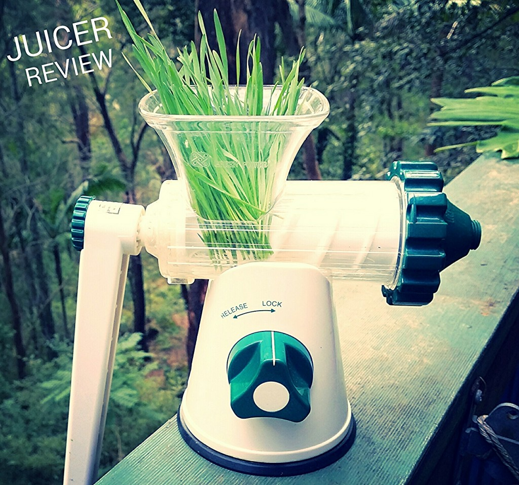Lexen Healty Juicer Review