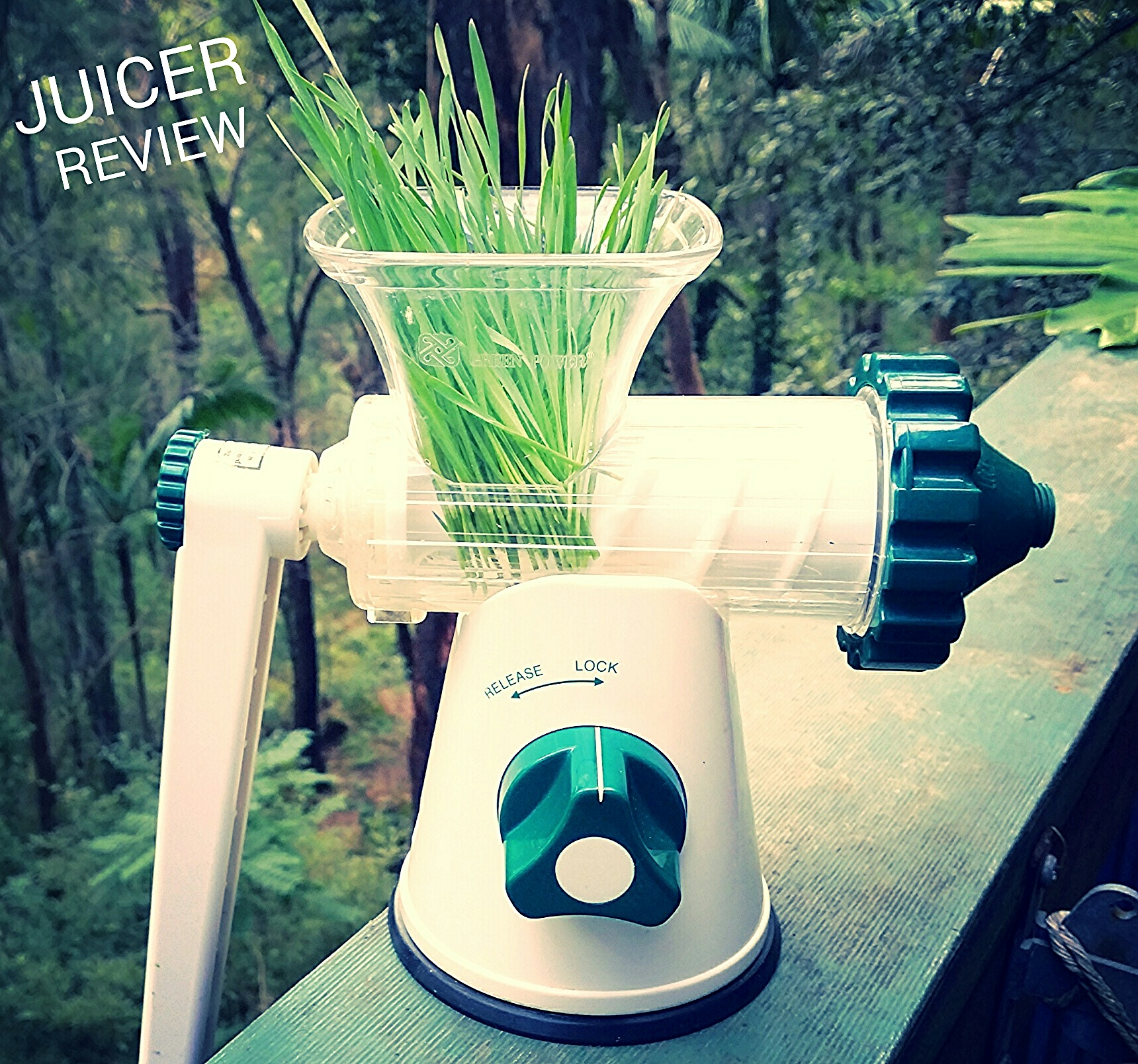 Wheatgrass Juicer. 9 Best Wheatgrass Juicers. Omega J8006 Masticating Juicer. Best Wheatgrass ...